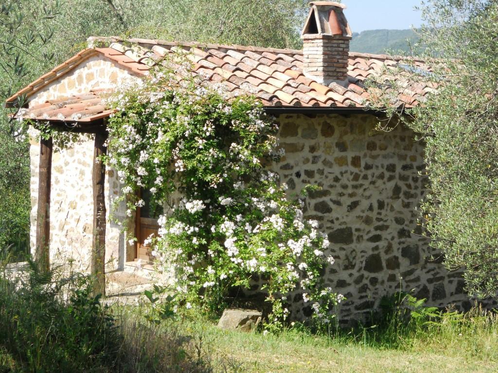 1. Casa Olivi